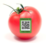 Rethinking QR Codes as Part of the Customer Experience