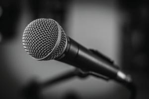 professional speakers